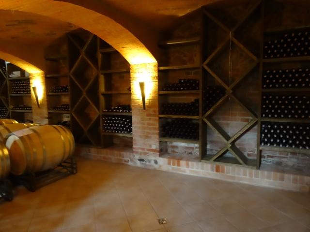 Kolekcja win w piwnicy