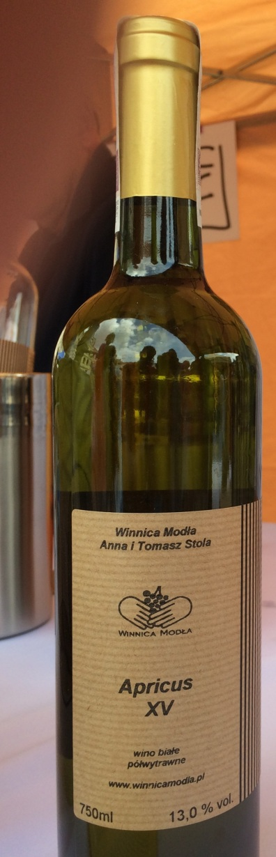 Winnica Stola_Apricus_XV